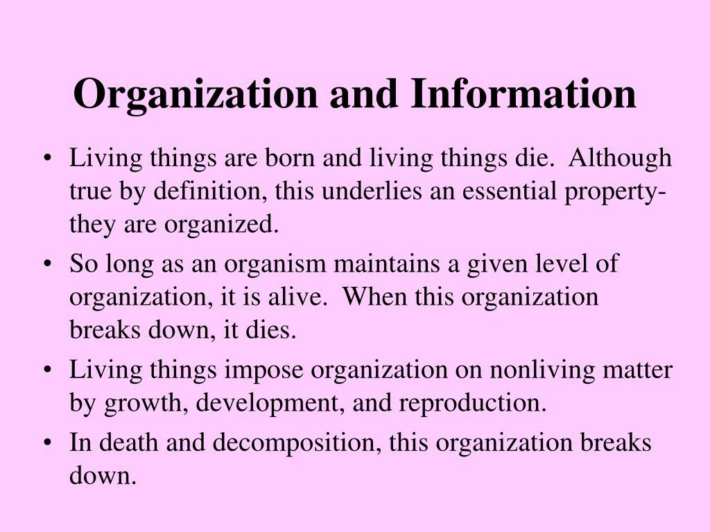 Organization and Information