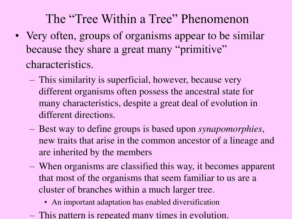 "The ""Tree Within a Tree"" Phenomenon"