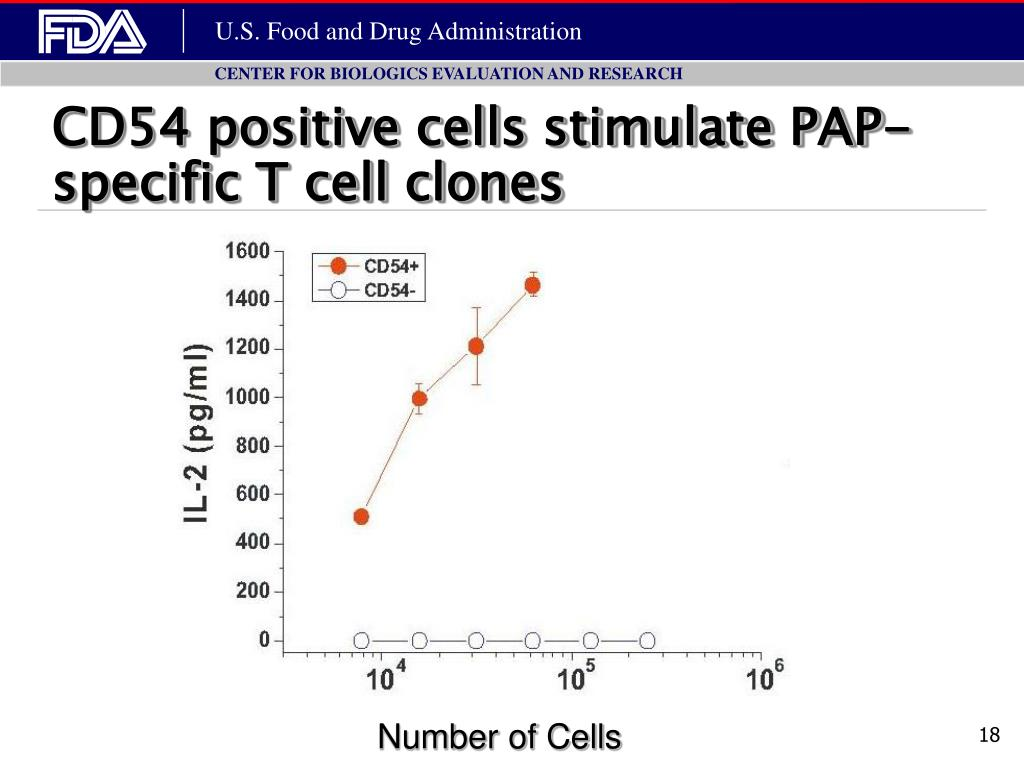 CD54 positive cells stimulate PAP-specific T cell clones