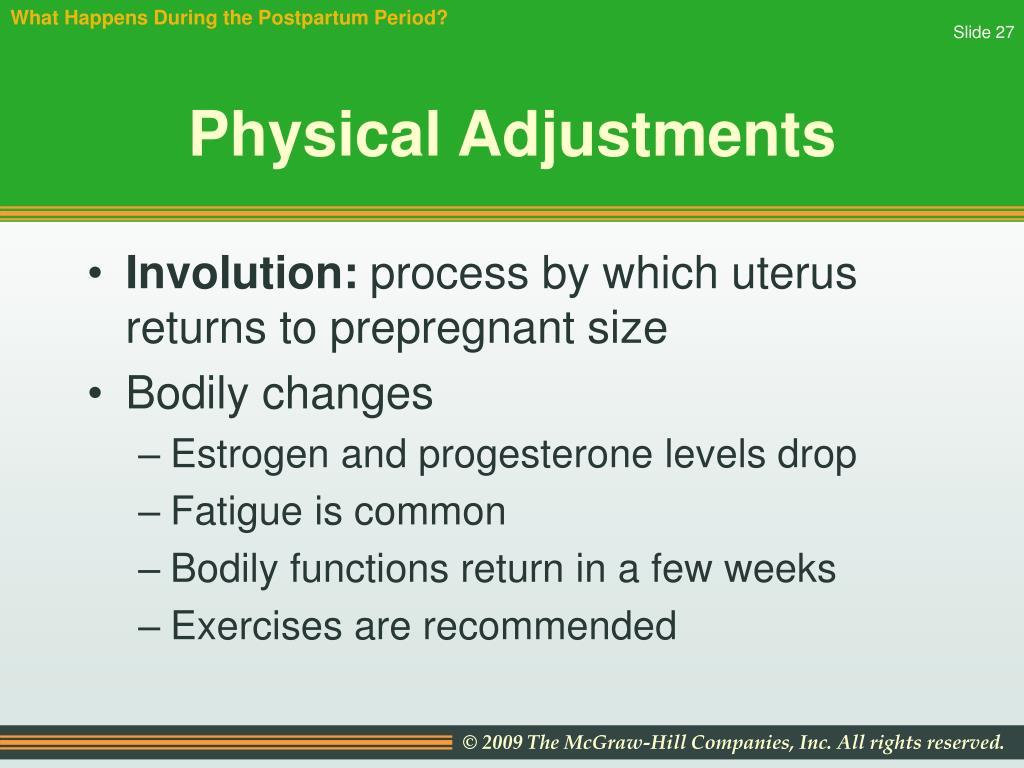 What Happens During the Postpartum Period?