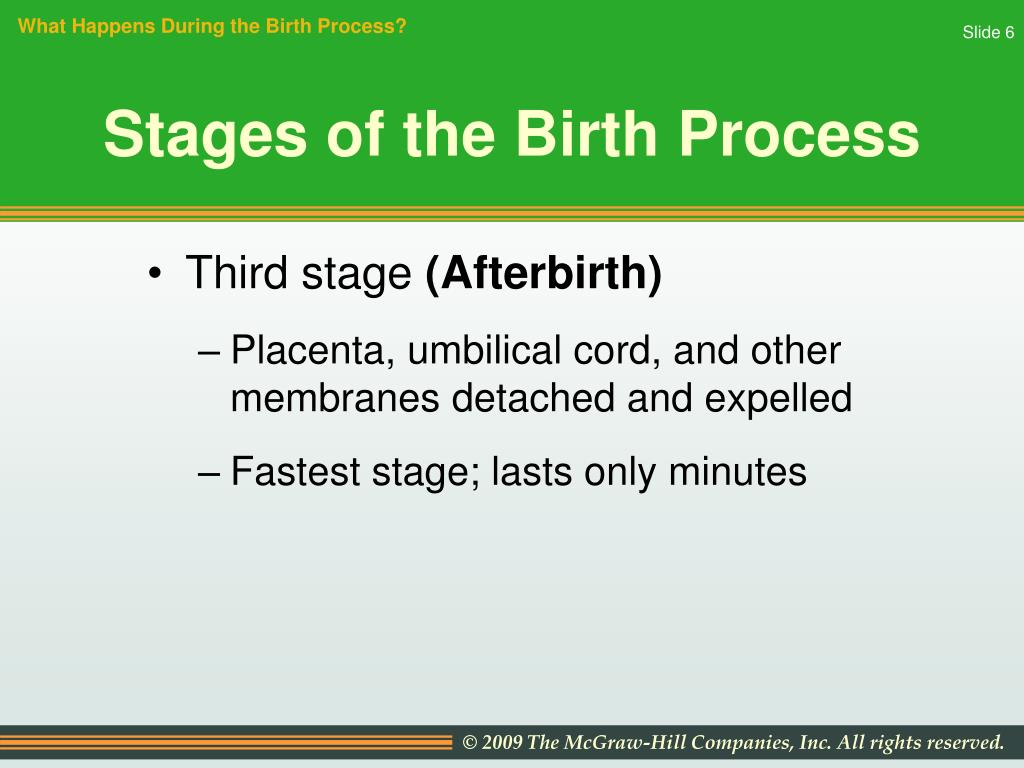 What Happens During the Birth Process?