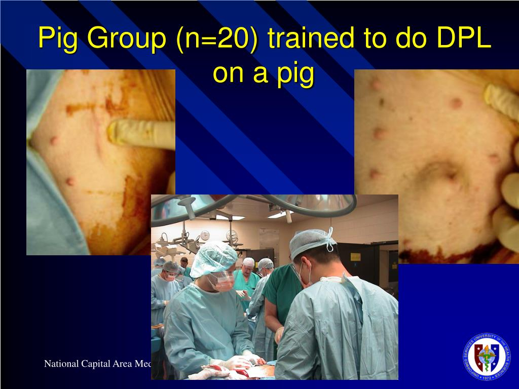 Pig Group (n=20) trained to do DPL on a pig