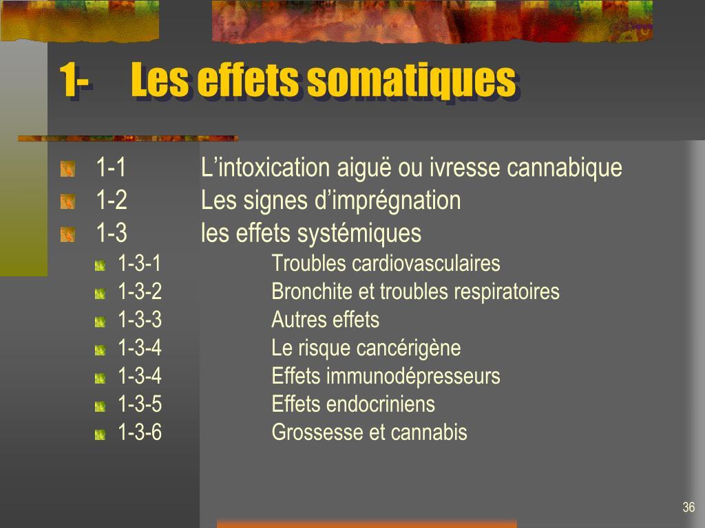 1-Les effets somatiques
