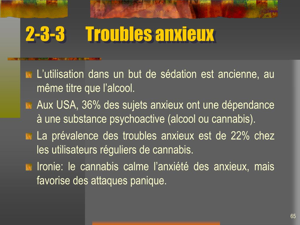 2-3-3Troubles anxieux