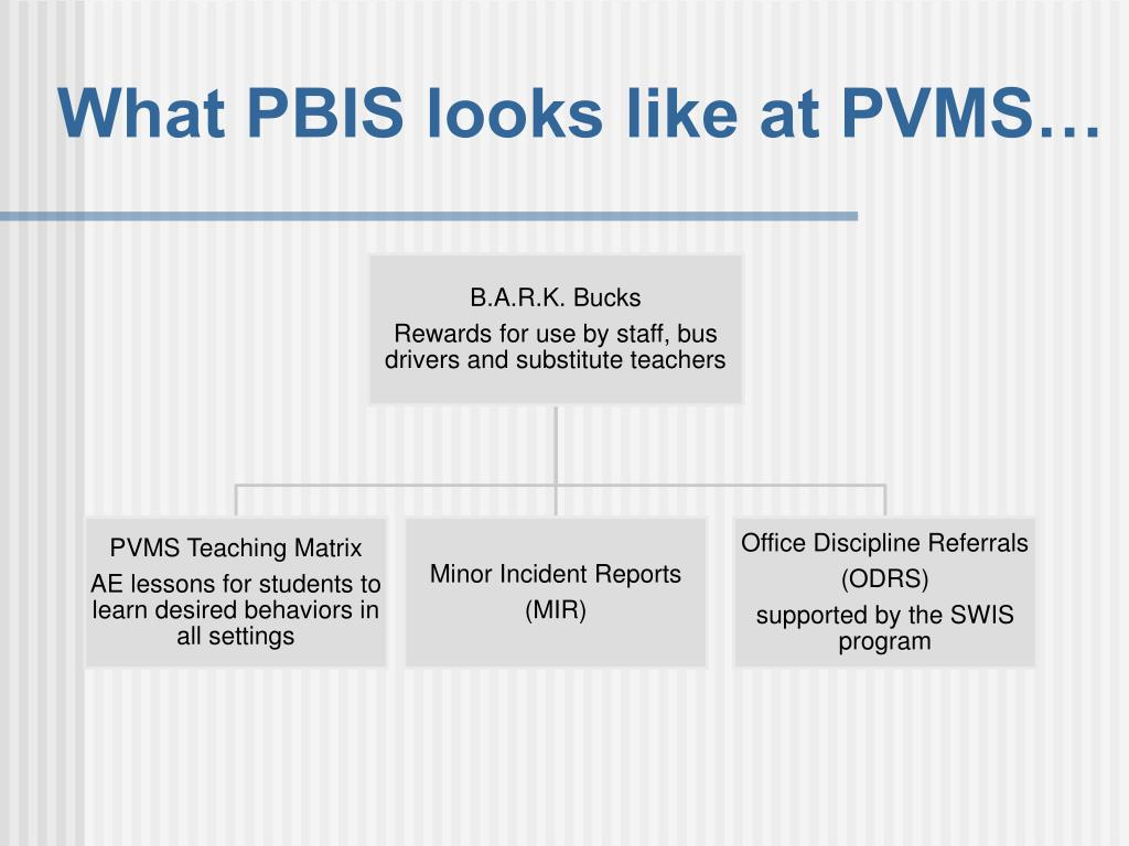 What PBIS looks like at PVMS…