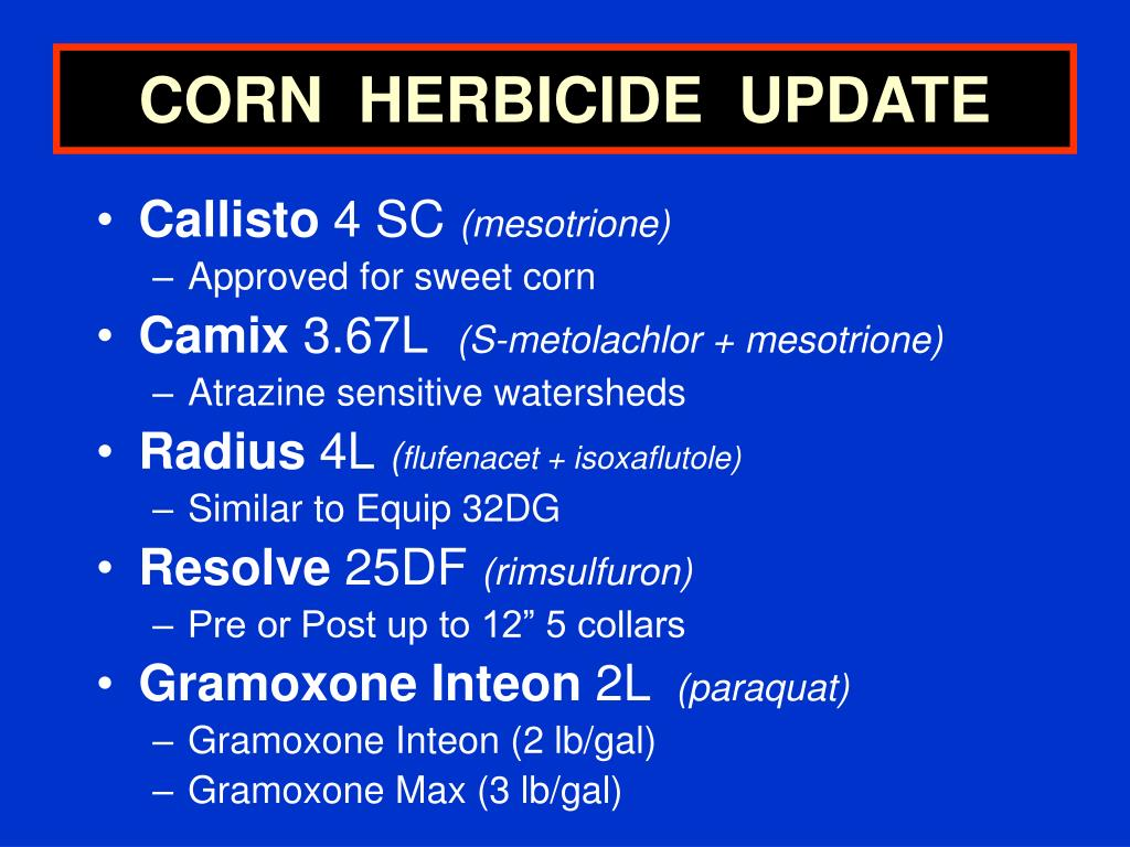 CORN  HERBICIDE  UPDATE