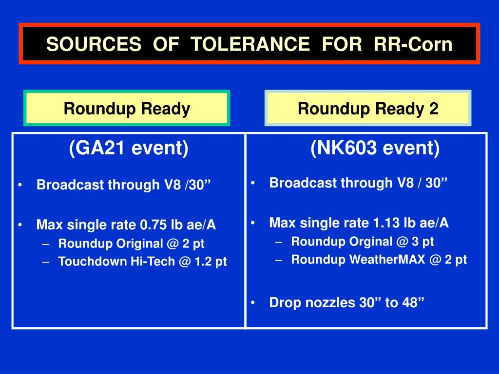 SOURCES  OF  TOLERANCE  FOR  RR-Corn