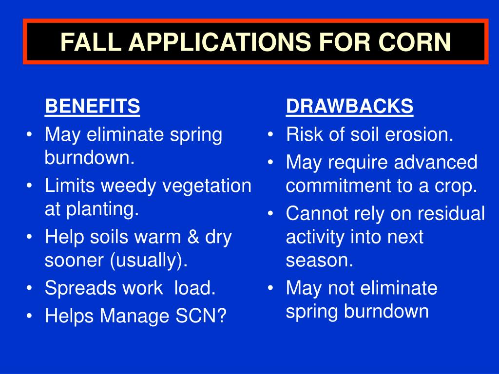 FALL APPLICATIONS FOR CORN