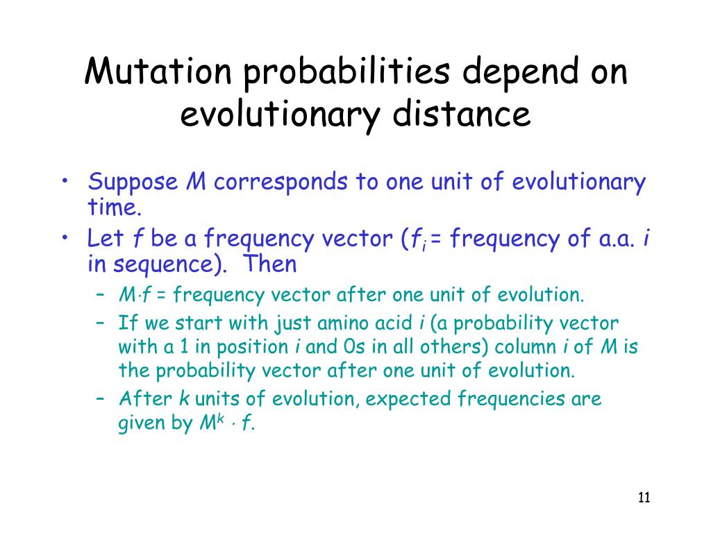 Mutation probabilities depend on evolutionary distance