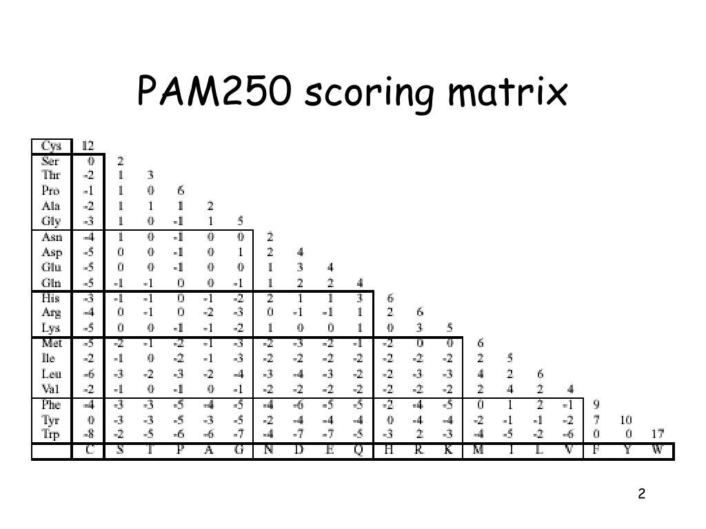 PAM250 scoring matrix