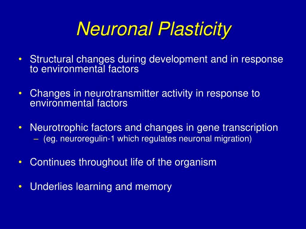 Neuronal Plasticity