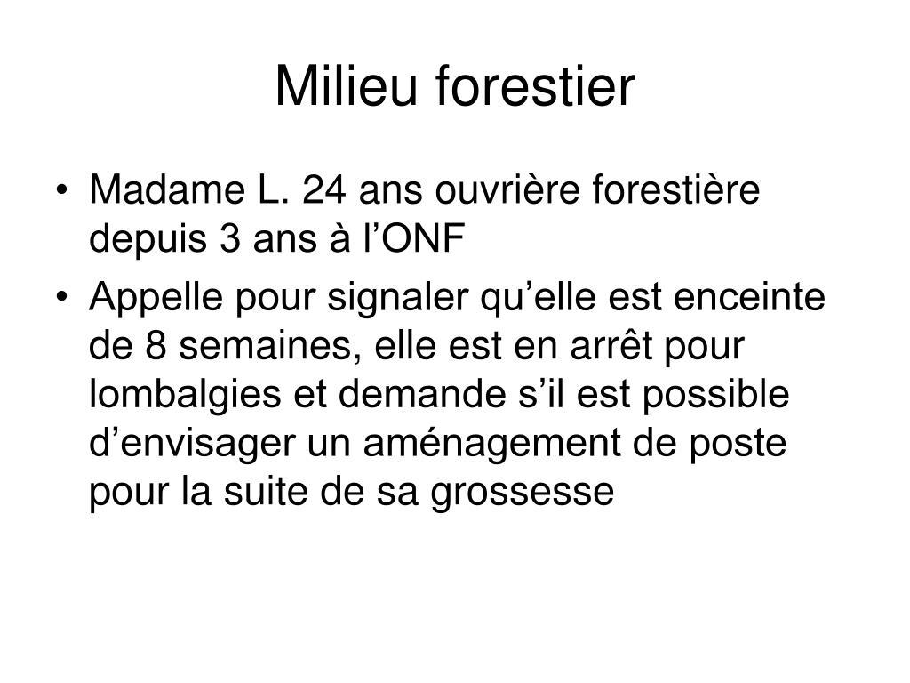 Milieu forestier