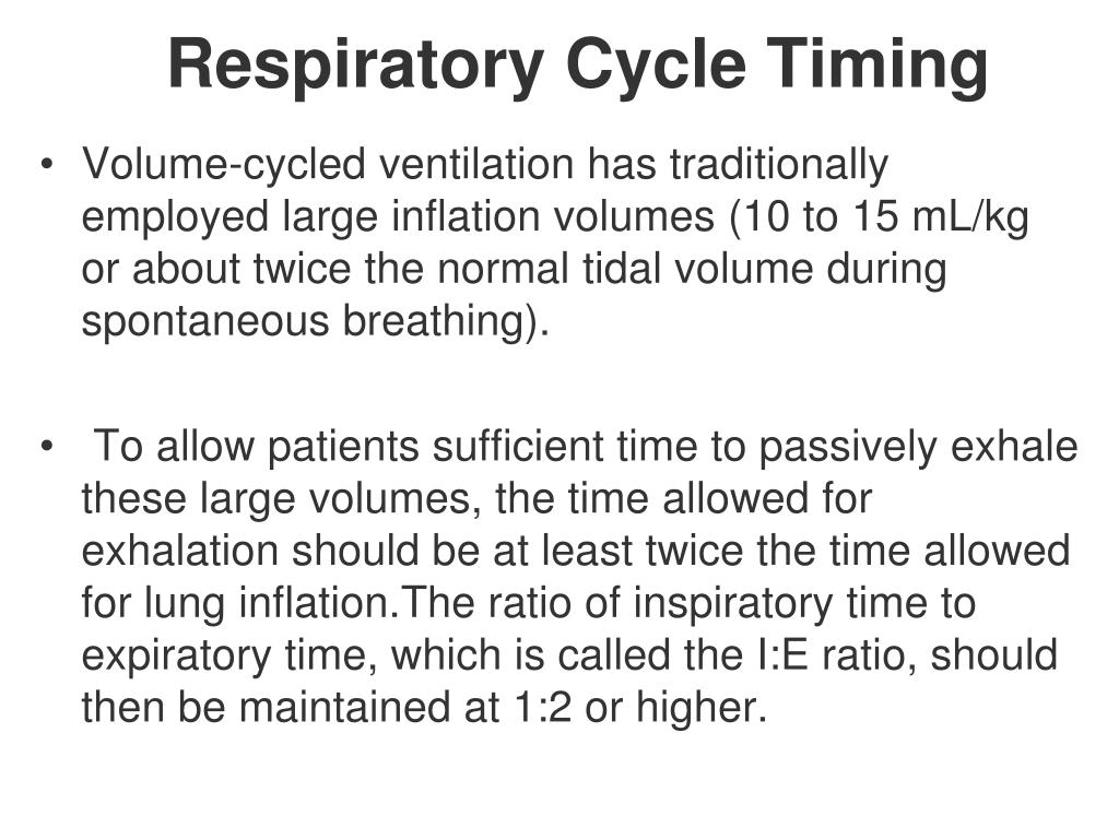 Respiratory Cycle Timing