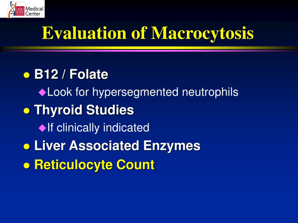 Evaluation of Macrocytosis
