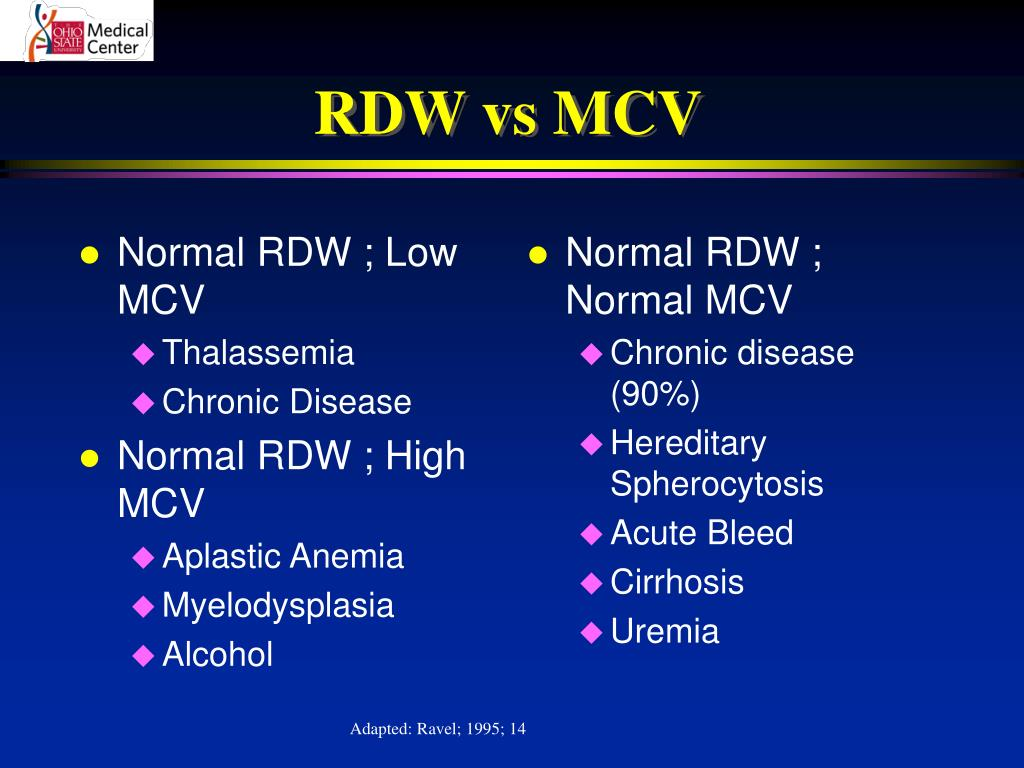 Normal RDW ; Low MCV