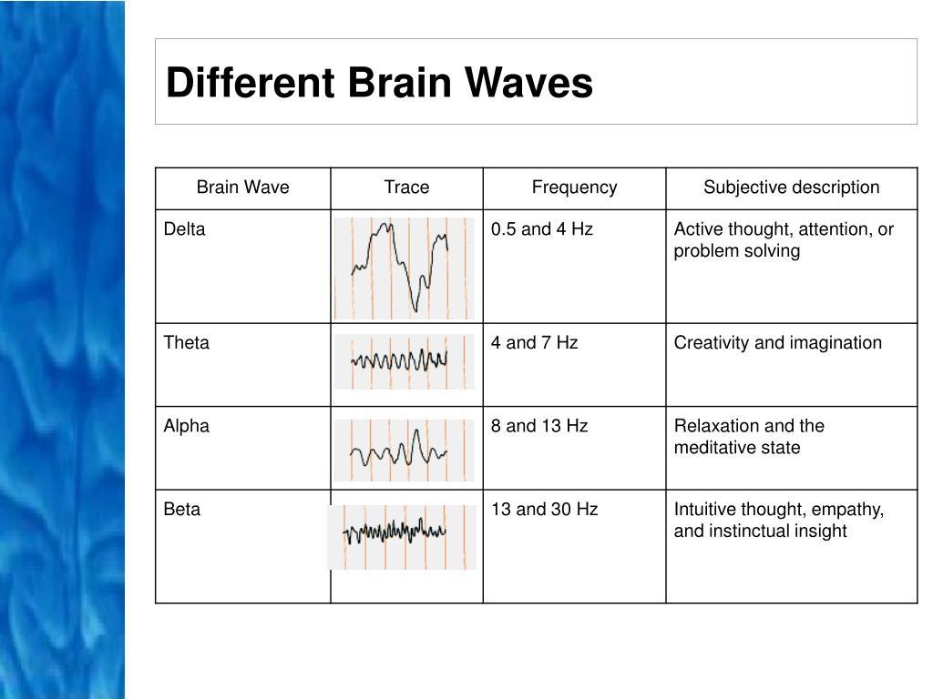 Different Brain Waves