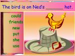 the bird is on ned s hat