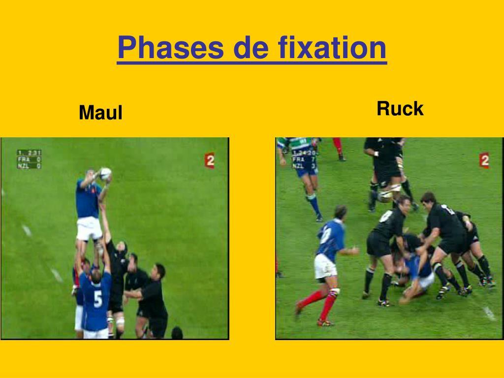 Phases de fixation