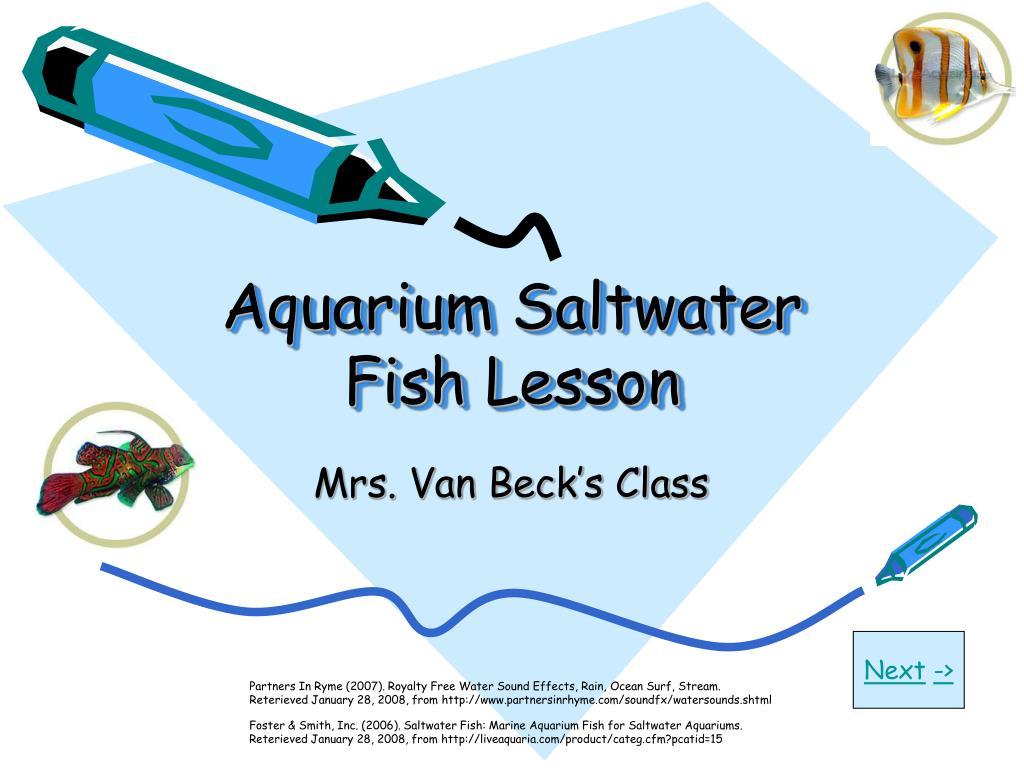 Aquarium Saltwater Fish Lesson