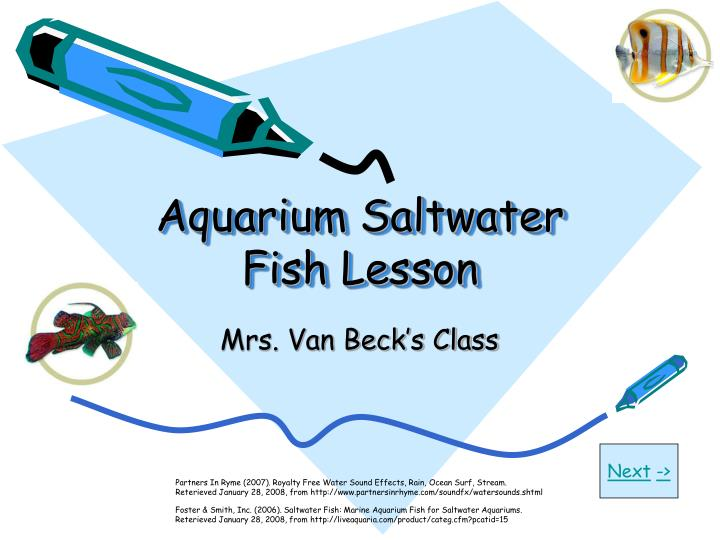 Aquarium saltwater fish lesson