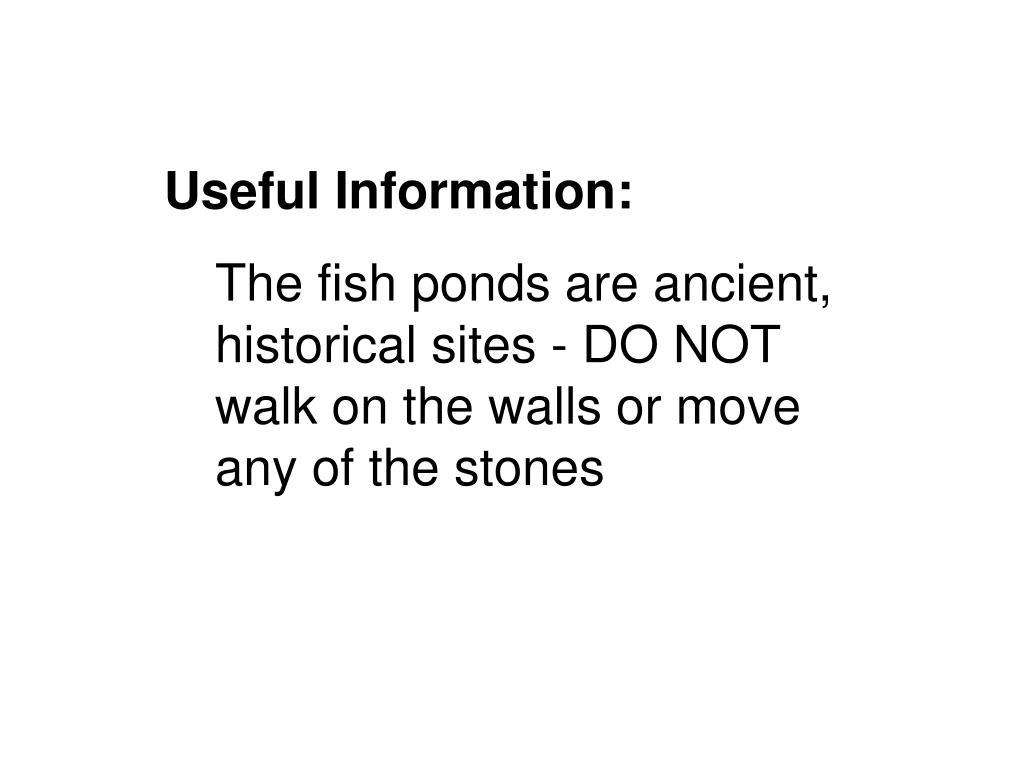 Useful Information: