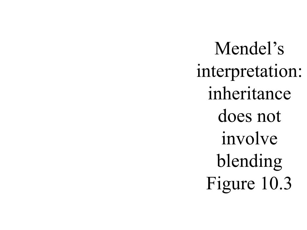 Mendel's interpretation: