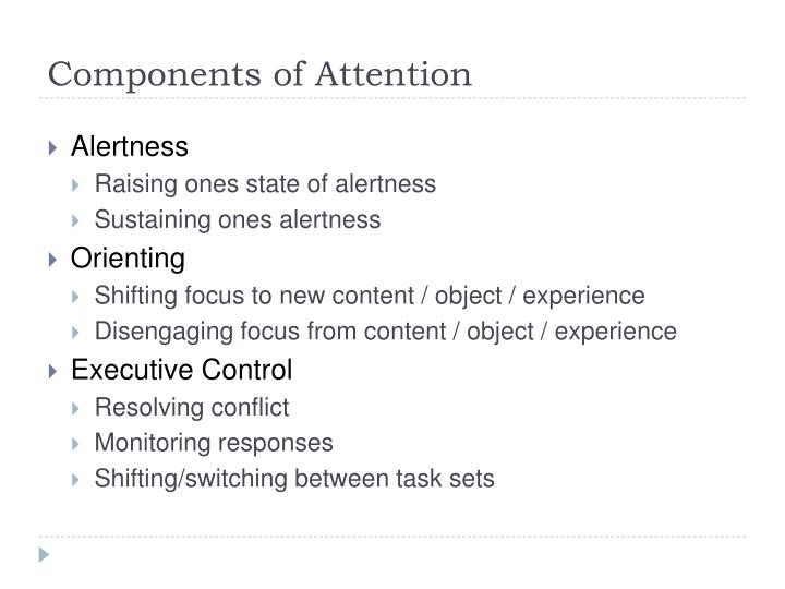 Components of Attention