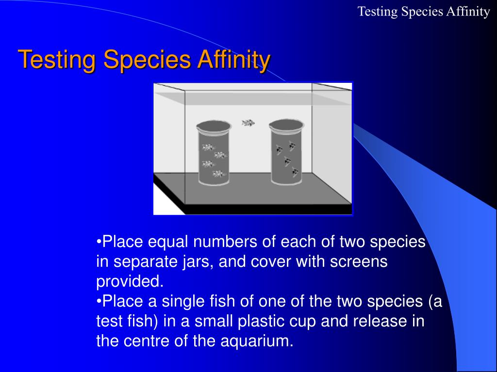 Testing Species Affinity