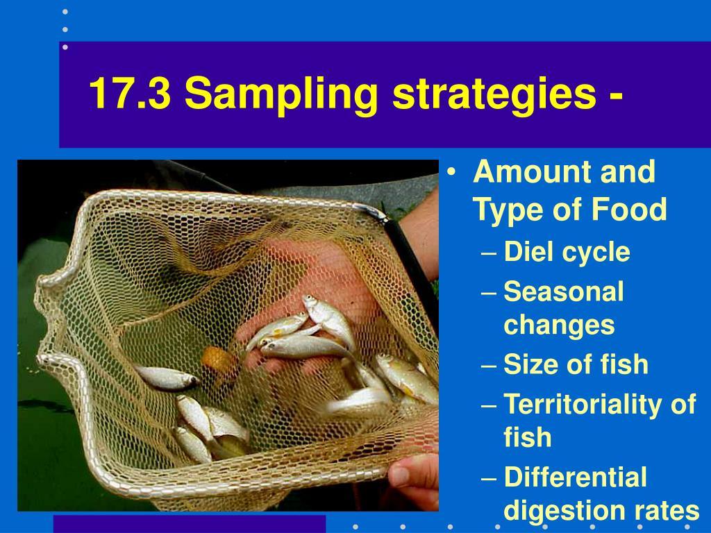 17.3 Sampling strategies -