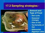 17 3 sampling strategies