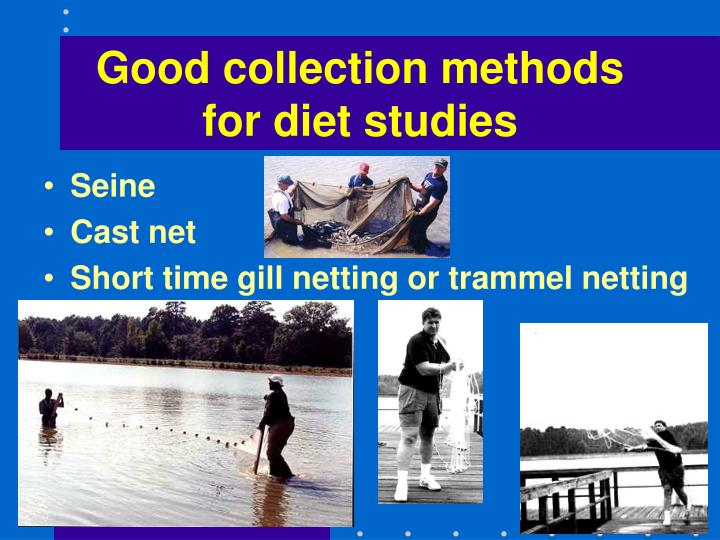 Good collection methods for diet studies