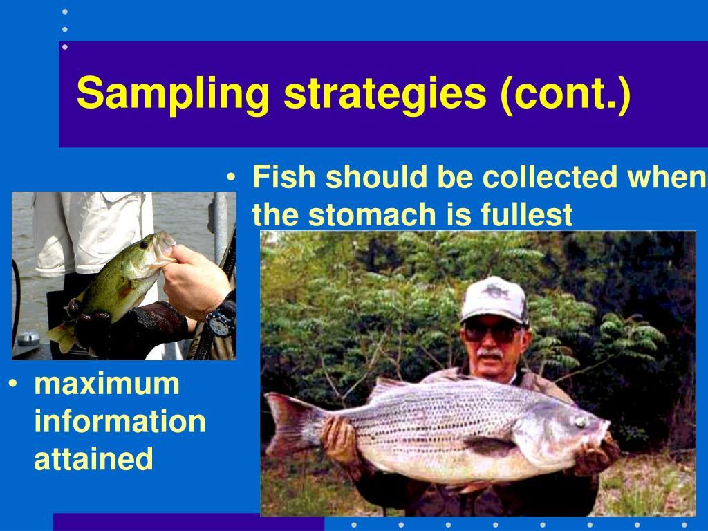 Sampling strategies (cont.)