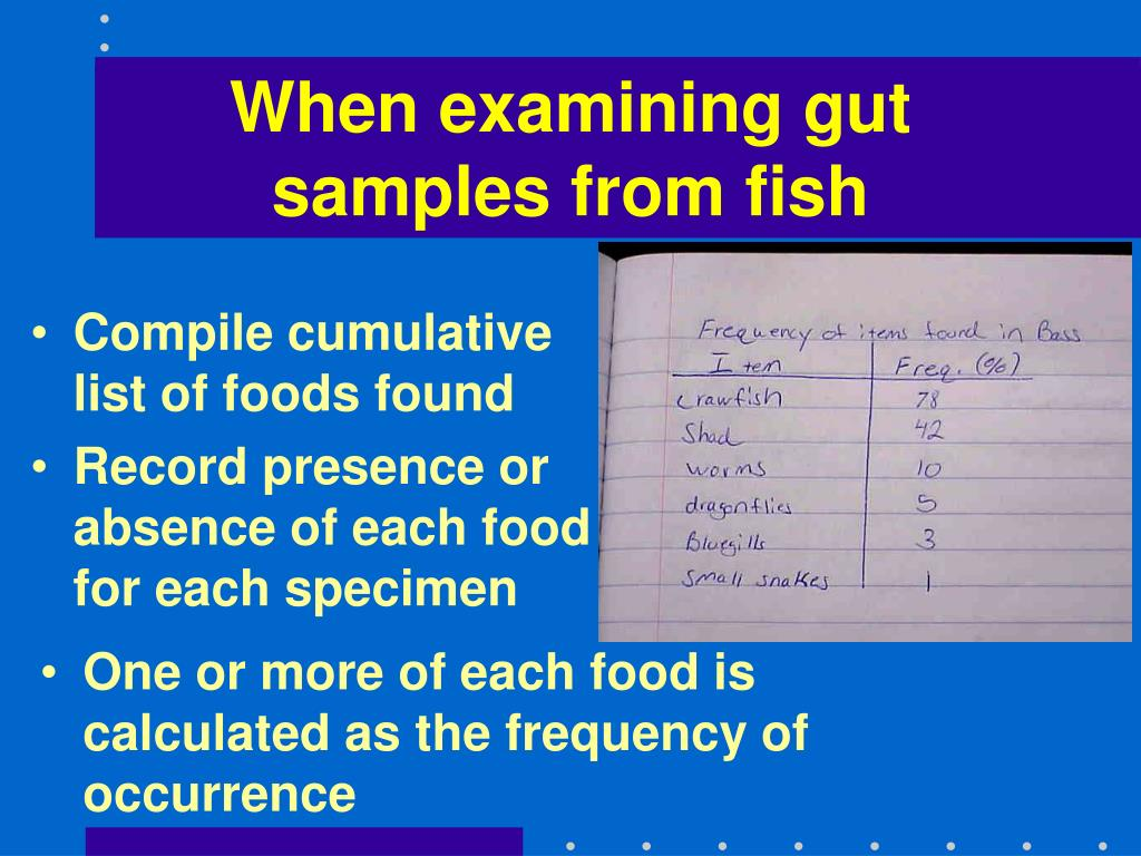 When examining gut samples from fish