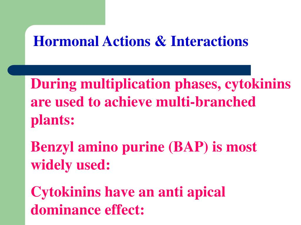Hormonal Actions & Interactions