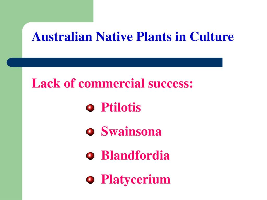 Australian Native Plants in Culture
