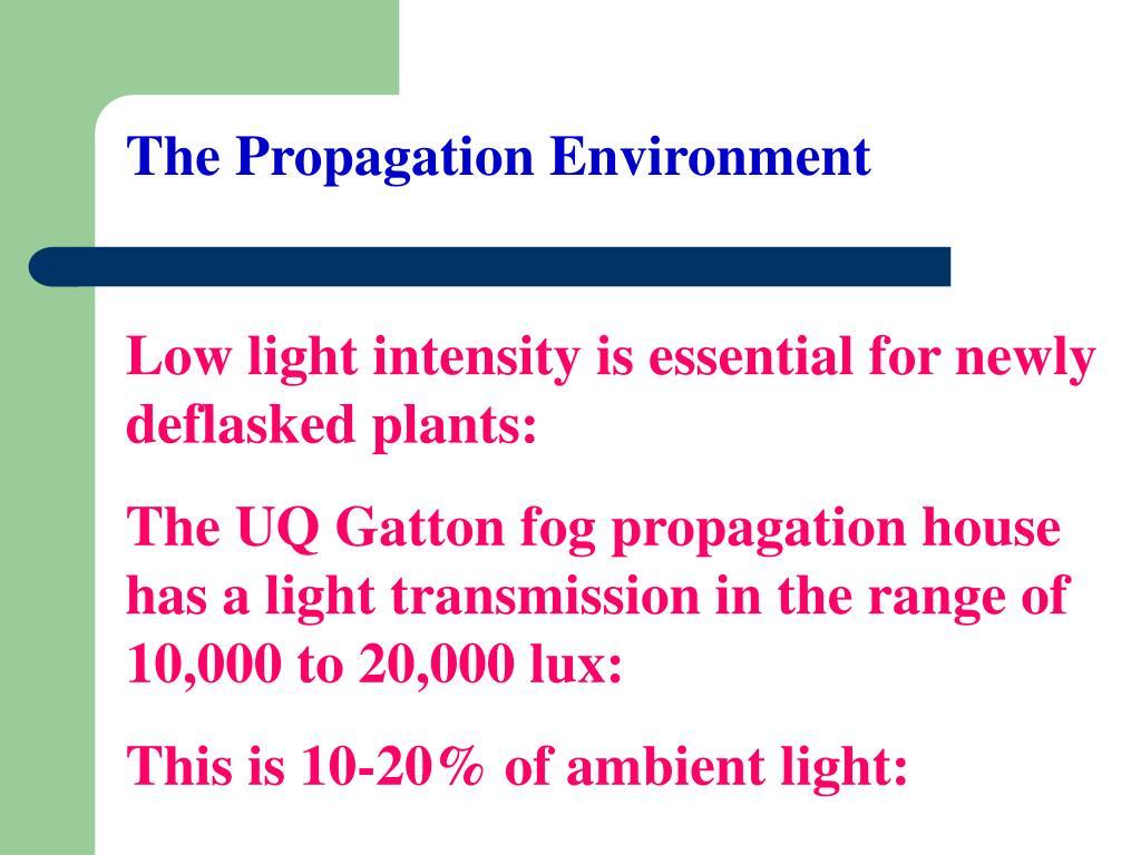 The Propagation Environment