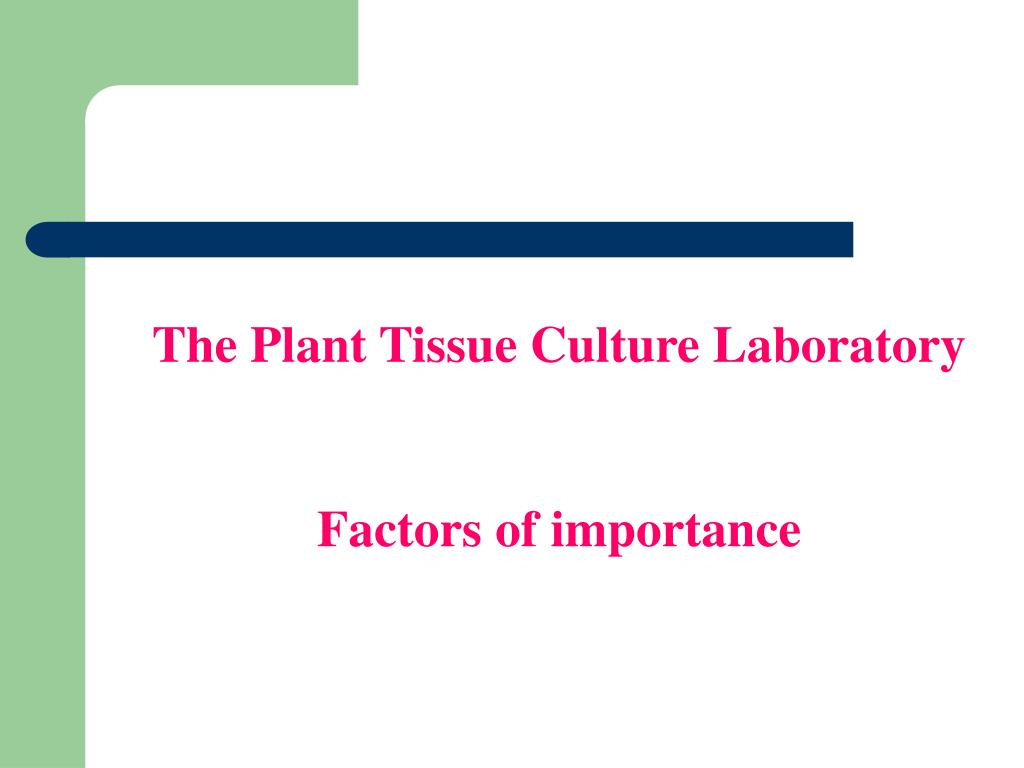 The Plant Tissue Culture Laboratory