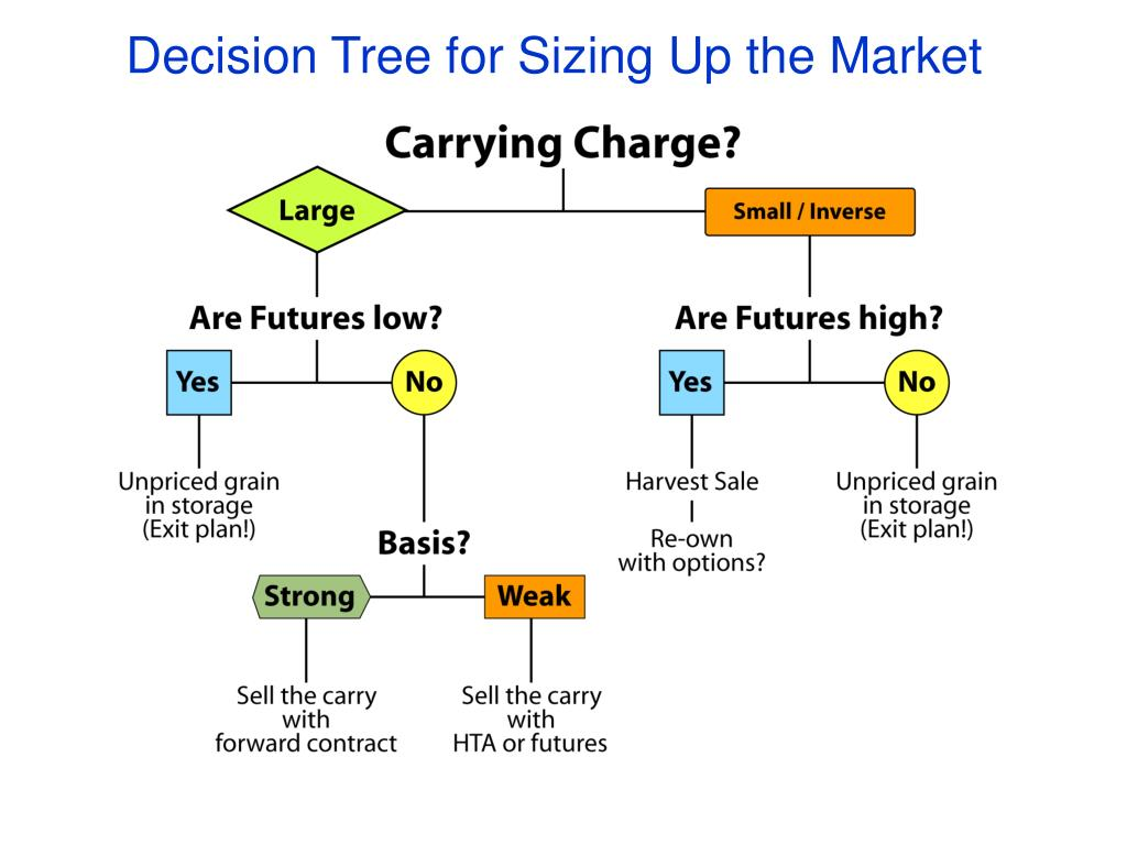 Decision Tree for Sizing Up the Market