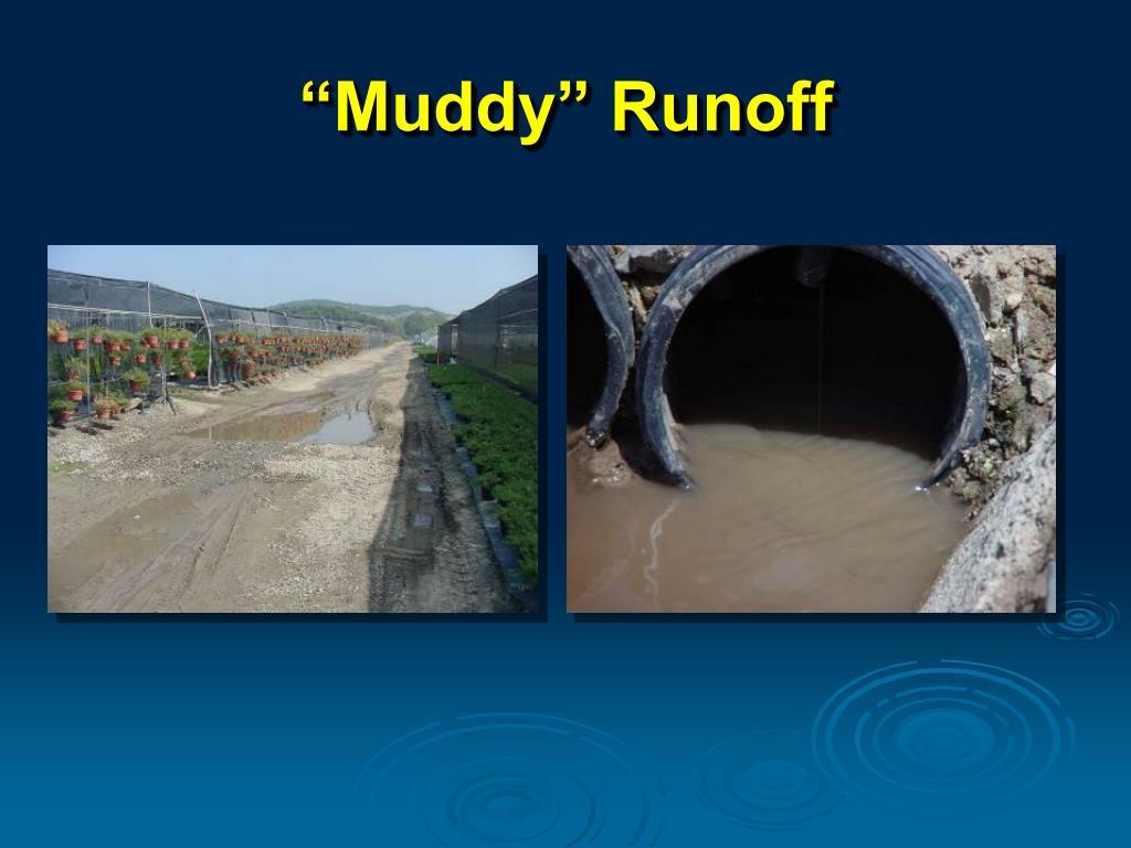 """""""Muddy"""" Runoff"""