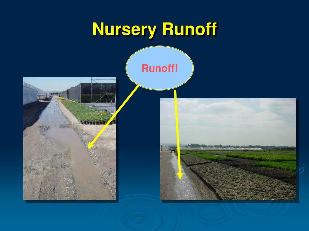 Nursery Runoff