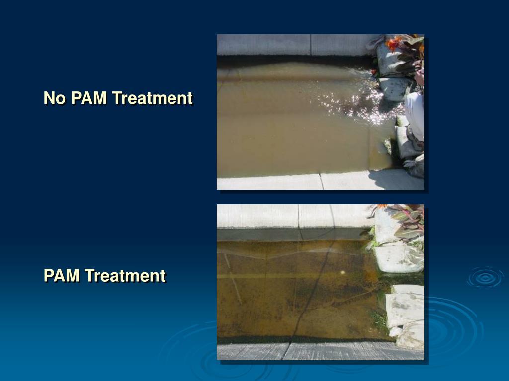 No PAM Treatment