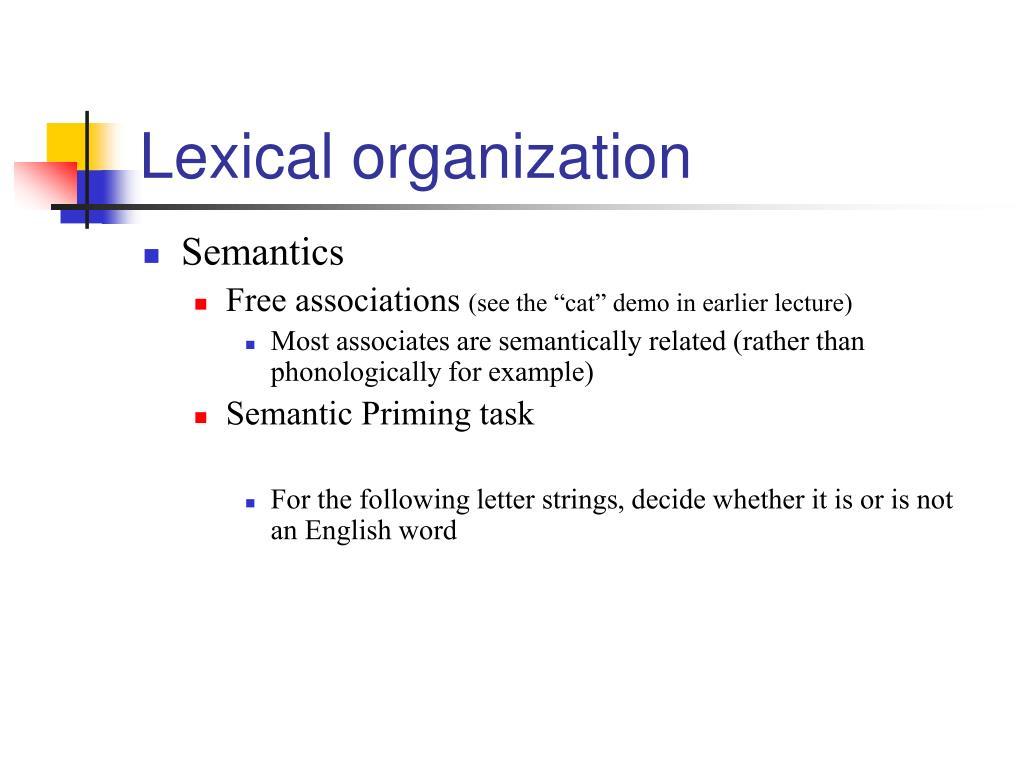Lexical organization