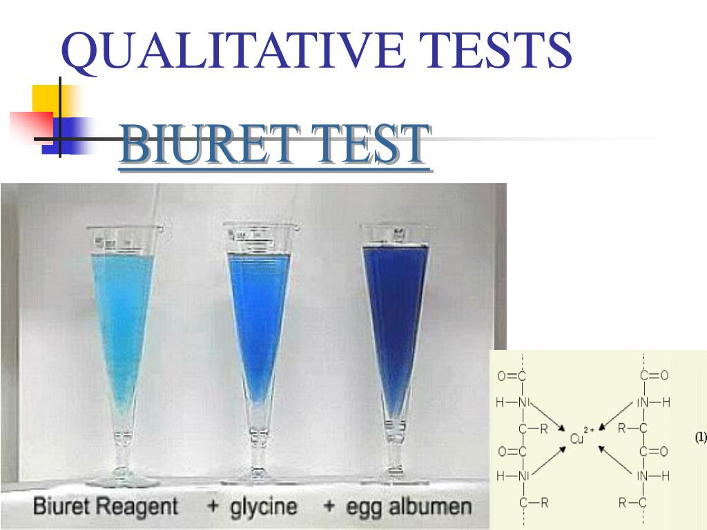 use of biuret reagent to test Biuret reagent is an alkaline mixture consisting of potassium hydroxide and copper sulfate it is often used to test for protein in human urine or in the human bloodstream a significant reaction of biuret reagent with protein in human urine analysis can indicate problems with the function of the kidneys, diabetes, heart disease or other health .