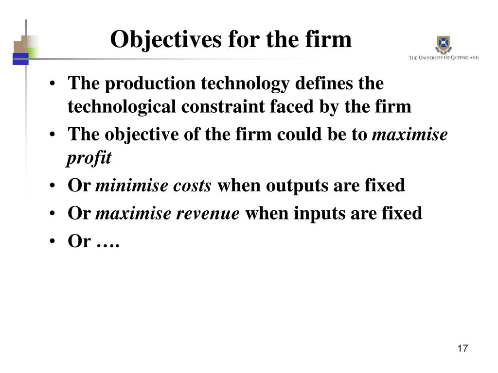 Objectives for the firm