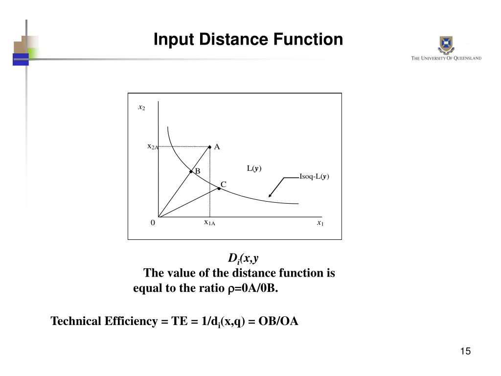 Input Distance Function