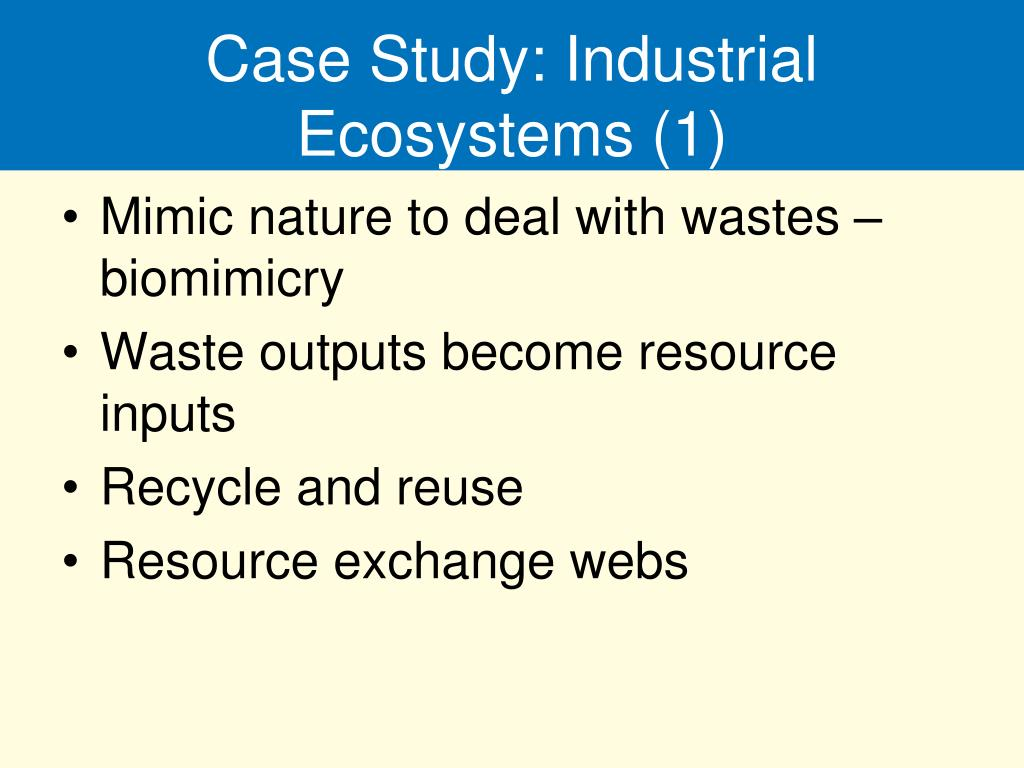 Case Study: Industrial Ecosystems (1)