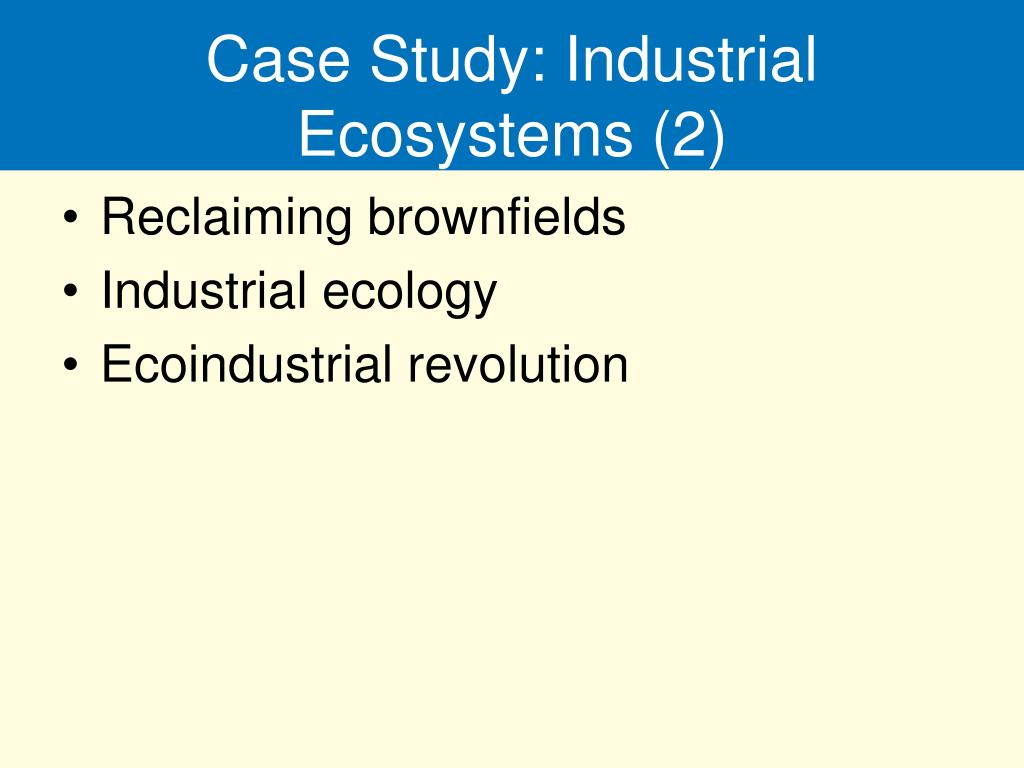 Case Study: Industrial Ecosystems (2)