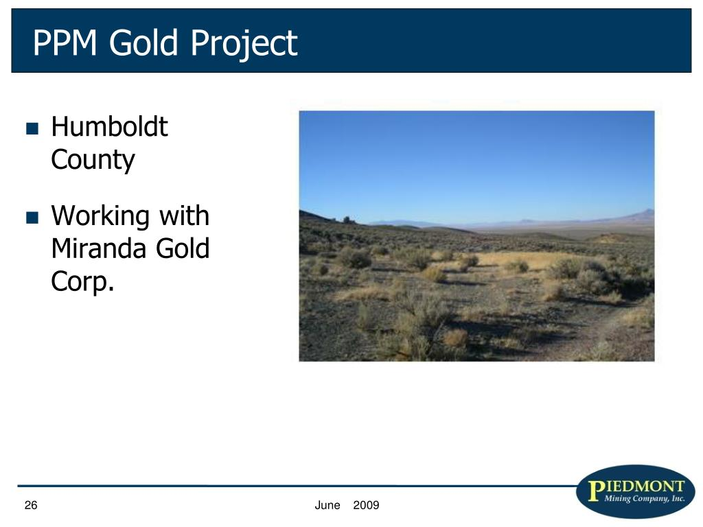 PPM Gold Project