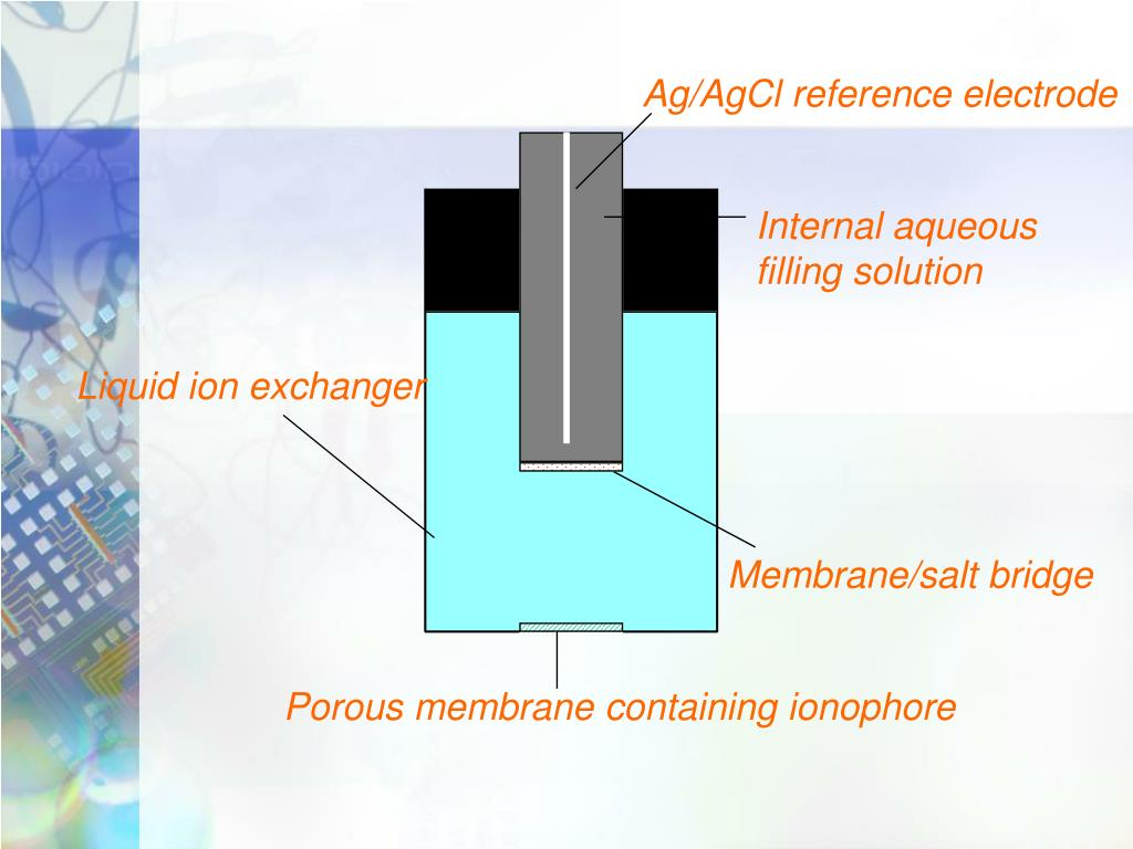 Ag/AgCl reference electrode