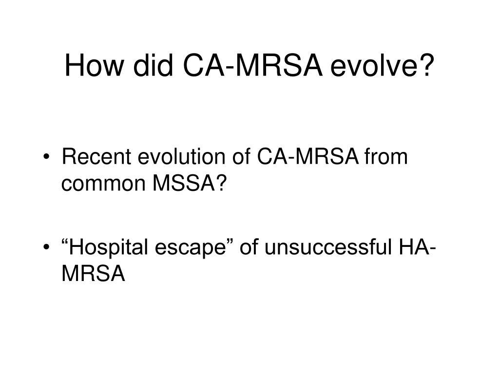 How did CA-MRSA evolve?